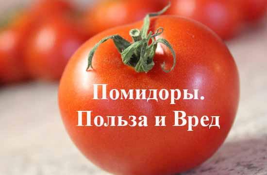 pomidory pol'za i vred dlja organizma