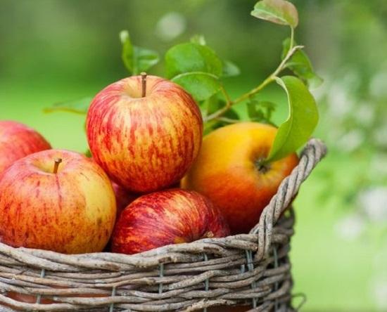 jabloki - samyj poleznyj produkt pitanija