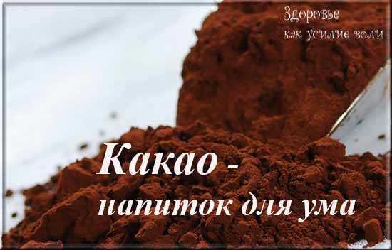 poroshok kakao - napitok dlja uma